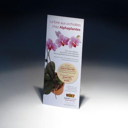 Dépliant orchidées Alphaplantes