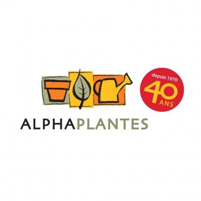 Sceau des 40 ans Alphaplantes