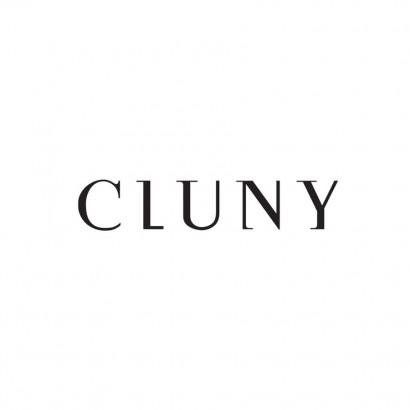 Logo_Cluny-e1430147341748.jpg