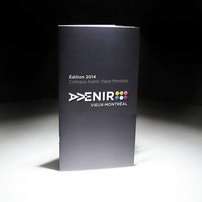 Brochure_SDCVM-1.jpg