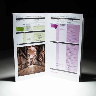 Brochure_SDCVM-2.jpg