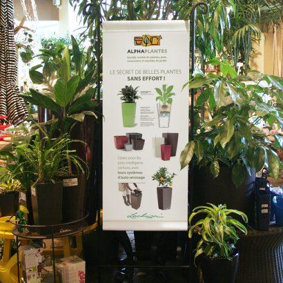 Bannière pour les pots Lechuza Alphaplantes