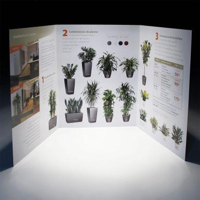 Brochure de location et d'entretien Alphaplantes