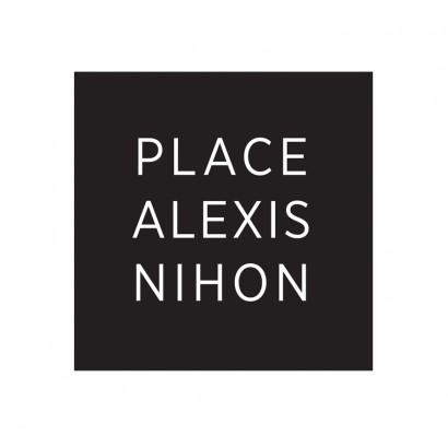 Logo_Place-Alexis-Nihon.jpg